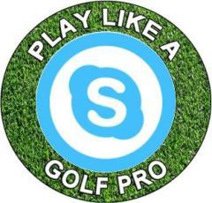 Live Skype online free golf video lesson instructions PGA Tour winner 在线免费高尔夫球视像频教学课说明PGA 巡回赛教练